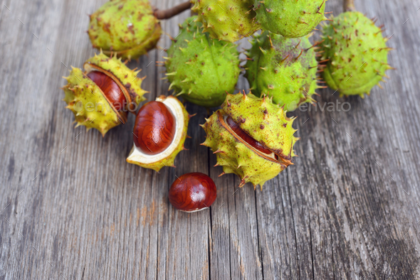 Chestnut on old wooden background - Stock Photo - Images