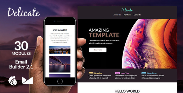 Delicate Responsive Email Template + Online Emailbuilder 2.1 by web4pro