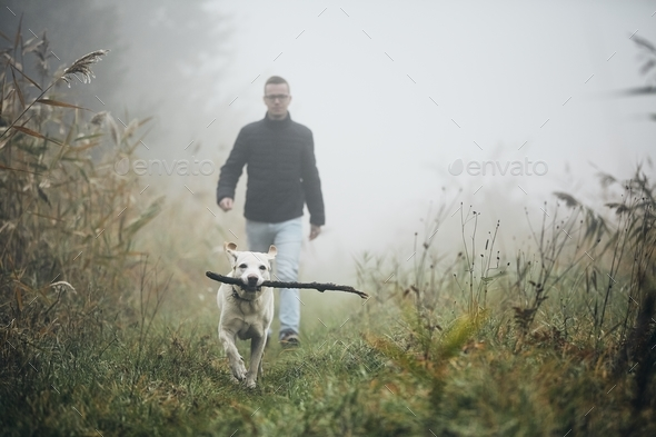 Man walking with dog in autumn fog. - Stock Photo - Images
