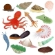 Shellfish and Marine Animal Vectors - GraphicRiver Item for Sale