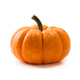 Fresh orange miniature pumpkin isolated - PhotoDune Item for Sale