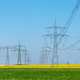 Overhead power lines in the fields - PhotoDune Item for Sale