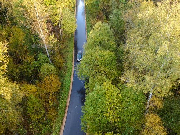 Aerial view of thick forest in autumn - Stock Photo - Images