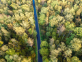 Aerial view of thick forest in autumn - PhotoDune Item for Sale