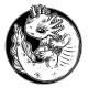 Axolotl Salamander Amphibian Animal in Line Style - GraphicRiver Item for Sale