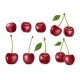 Set of Realistic Ripe Cherry with Leaves - GraphicRiver Item for Sale