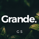 Grande Google Slides - GraphicRiver Item for Sale