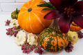 Fall decor with burgundy red lily and pumpkins - PhotoDune Item for Sale