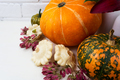 Thanksgiving arrangement with pumpkins and pink seeds - PhotoDune Item for Sale