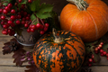 Rustic cornucopia decor with red berry and pumpkins - PhotoDune Item for Sale