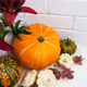 Fall arrangement with red lily and pumpkins - PhotoDune Item for Sale