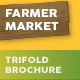 Farmer Market Trifold Brochure - GraphicRiver Item for Sale