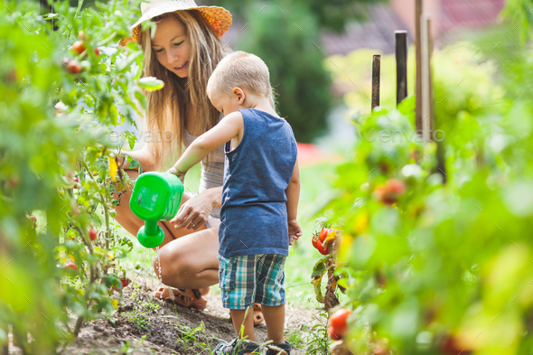 Cute toddler helphing mom in the garden - Stock Photo - Images