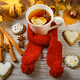 Autumn Cup of tea with gingerbread - PhotoDune Item for Sale