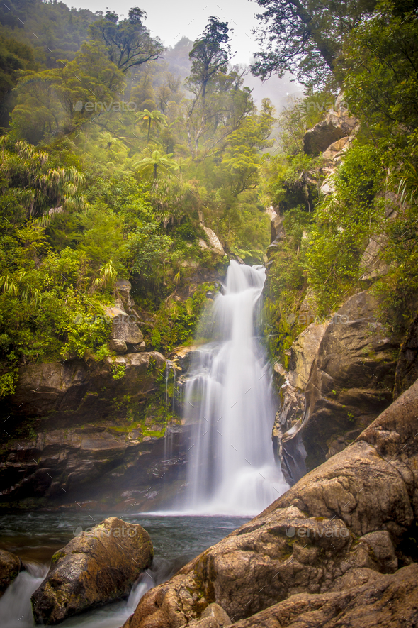 Foggy Rainforest waterfall New Zealand - Stock Photo - Images