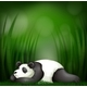 Sleeping Panda On Bamboo Template - GraphicRiver Item for Sale