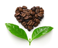 heart shaped roasted coffee beans and leaves, fair trade concept image isolated on white background - PhotoDune Item for Sale