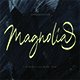 Magnolia Calligraphy Font - GraphicRiver Item for Sale