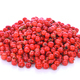 pink peppercorns seeds isolated on white background - PhotoDune Item for Sale