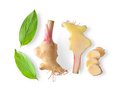 Ginger fresh with leaves Isolated on a white background - PhotoDune Item for Sale