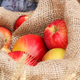 Fresh ripe apples in jute bag, healthy nutrition concept - PhotoDune Item for Sale