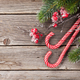 Christmas candy cane and fir tree - PhotoDune Item for Sale