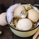 Organic Natural Eggs - PhotoDune Item for Sale