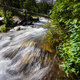 East Fork Dallas Creek Mt. Sneffels Wilderness area - PhotoDune Item for Sale