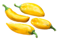 Patrizia sweet peppers c. annuum, paths - PhotoDune Item for Sale