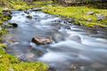 beautiful stream closeup, quiet natural scenery in valley - PhotoDune Item for Sale