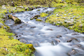 beautiful landscape in the forest, streams by slow shutter shooting - PhotoDune Item for Sale
