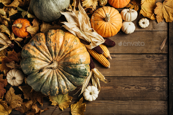 Pumpkins on a wooden background - Stock Photo - Images