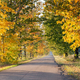 Colorful autumn road - PhotoDune Item for Sale