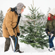 Grandfather and small girl getting a Christmas tree in forest. - PhotoDune Item for Sale