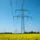 Power transmission lines in a field of blooming oilseed rape  - PhotoDune Item for Sale