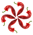 Red Chilli Pepper - PhotoDune Item for Sale