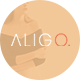 Aligo – Minimalist Ecommerce PSD Templates - ThemeForest Item for Sale