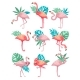 Flat Vector Set of Flamingos with Green - GraphicRiver Item for Sale