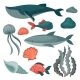 Flat Vector Set of Sea Animals and Objects. Big - GraphicRiver Item for Sale
