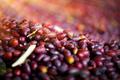 Black olives background - PhotoDune Item for Sale
