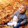 Little boy in autumn forest - PhotoDune Item for Sale
