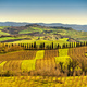 Tuscany panorama, rolling hills, trees and green fields. Italy - PhotoDune Item for Sale