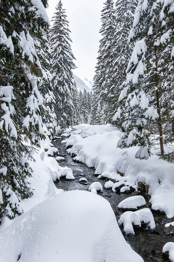 Turbulent river rapids in pictoresque forest during winter - Stock Photo - Images