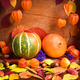 Autumn cozy still life. Pumpkins, autumn leaves and physalis on - PhotoDune Item for Sale