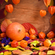 Autumn cozy still life. Pumpkin, autumn leaves and physalis on w - PhotoDune Item for Sale