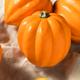 Raw Organic Golden Acorn Squash - PhotoDune Item for Sale