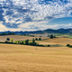 Landscape near Moncalvo, Monferrato, Italy - PhotoDune Item for Sale