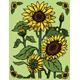 Sunflowers - GraphicRiver Item for Sale