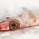 Watercolor painting of modern red sports car. - PhotoDune Item for Sale