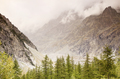 Foggy mountains with clouds and pine trees - PhotoDune Item for Sale